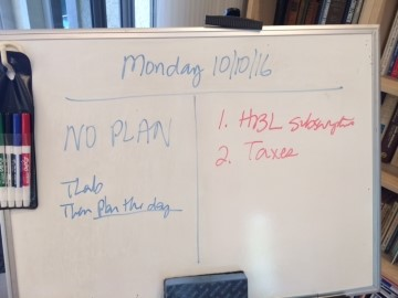 Monday - No Plan