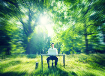 Image of man at a desk in a serene woodland