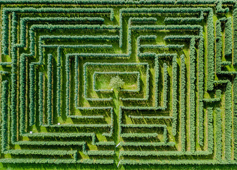 Image of Aerial view of maze
