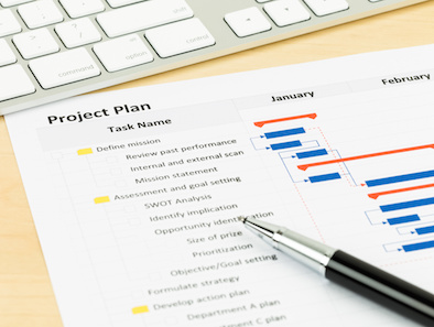 Image of Project Plan Gantt Chart