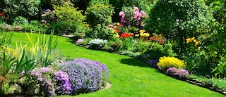 Image of a beautiful garden panorama with a manicured lawn pathway weaving thru flowerbeds and shrub plantings